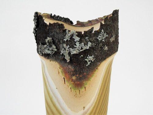 Vase en sumac avec lichen - Gilles McInnis